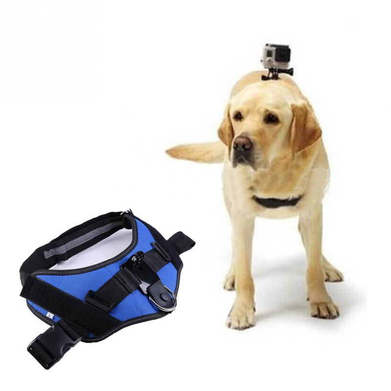 Adjustable Chest Mount Strap Body Pet Dog Original Hero 4 / 3 /2/1 - SMARTLIFE SELECTED CO.,LTD store