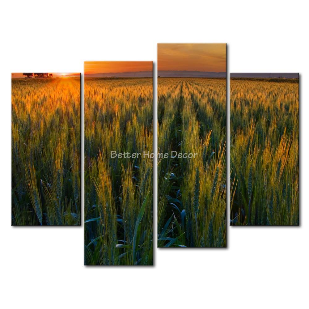3 Piece Wall Art Painting Green Wheat Field In The Sunset Picture Print On Canvas Landscape 4 5 The Picture(China (Mainland))