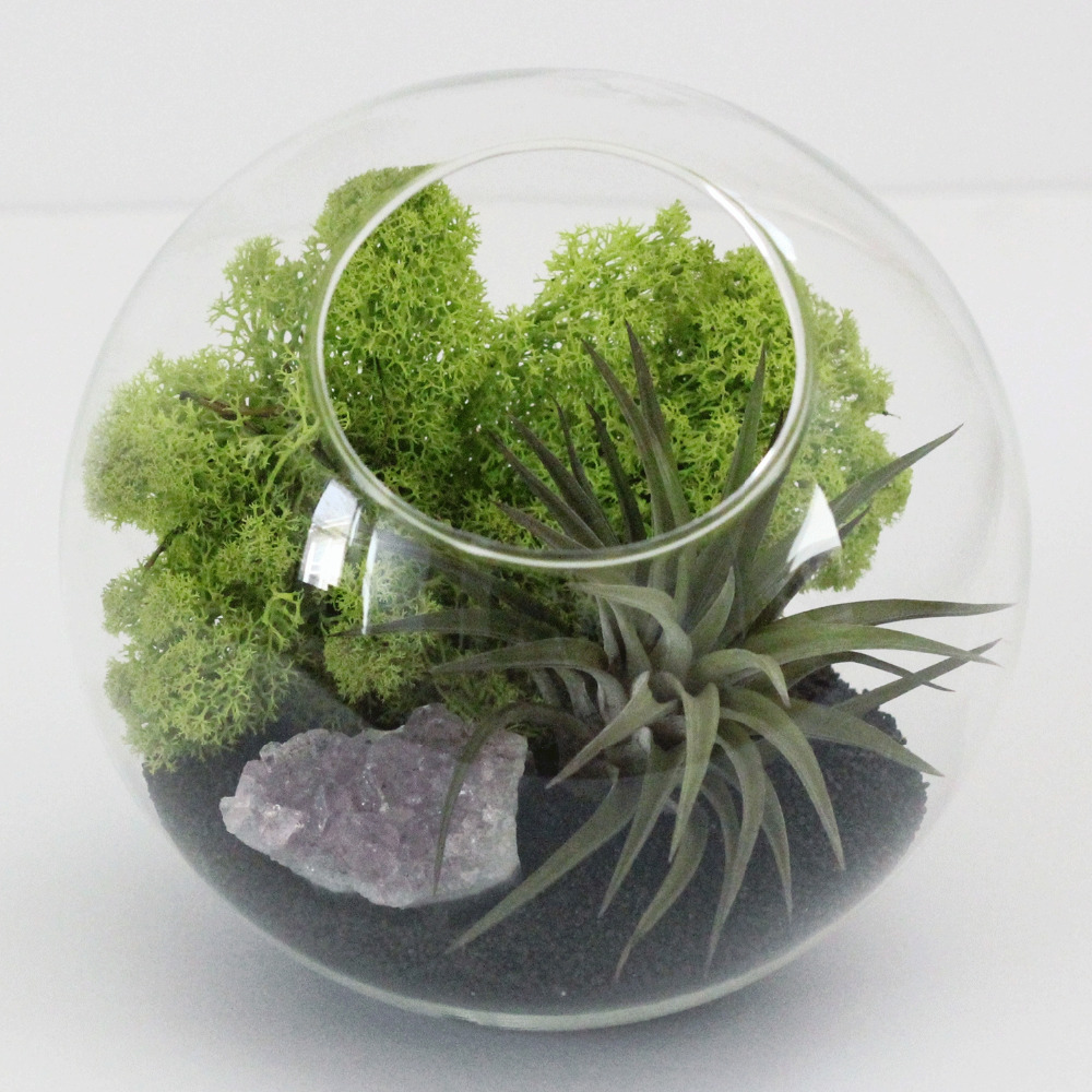 4pcs/set globe succulent terrariums,candle holders,recyclying glass vase,glass fishtank,indoor plant holder for home decoration(China (Mainland))