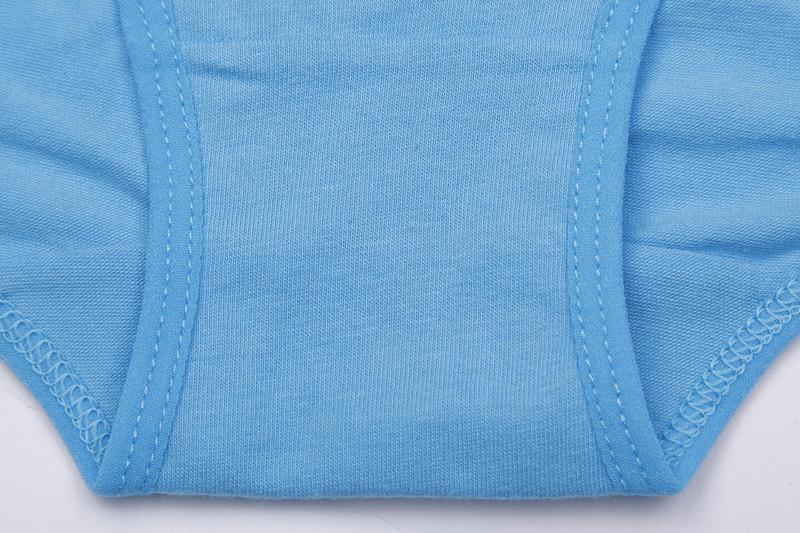 Free Shipping Cotton Women Underwear Briefs High Quality Plus Size Panties