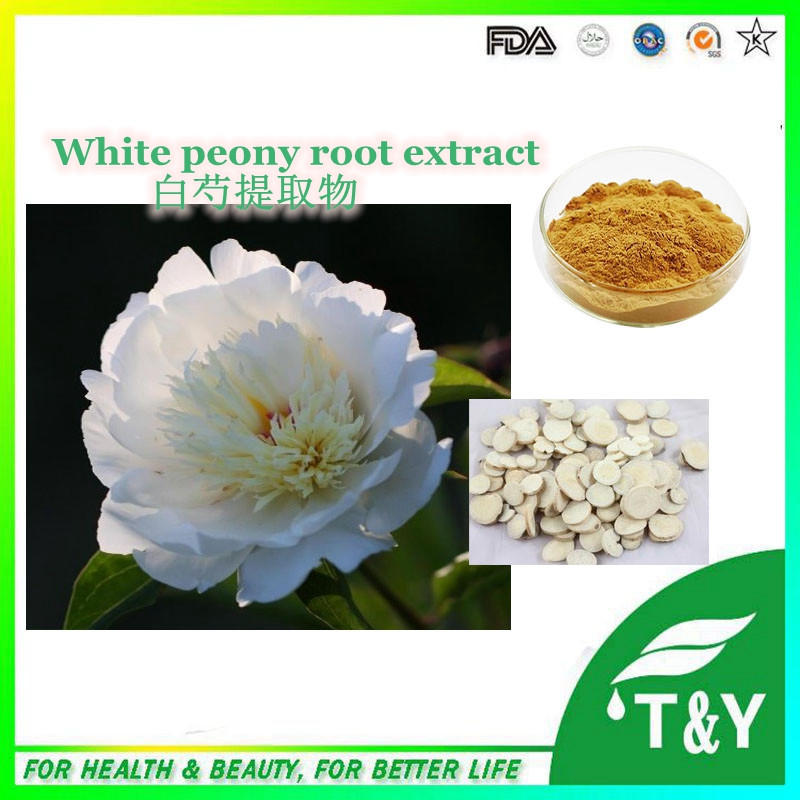 100% Natural Paeonia Lactiflora extract/White Peony Root extract Paeoniflorin powder 700g/lot