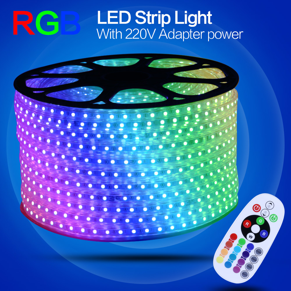 Waterproof LED Strip Light 220V 5050 3528 with Remote RGB Control 5630 Adapter Switching Power Supply for LED Strip Neon(China (Mainland))