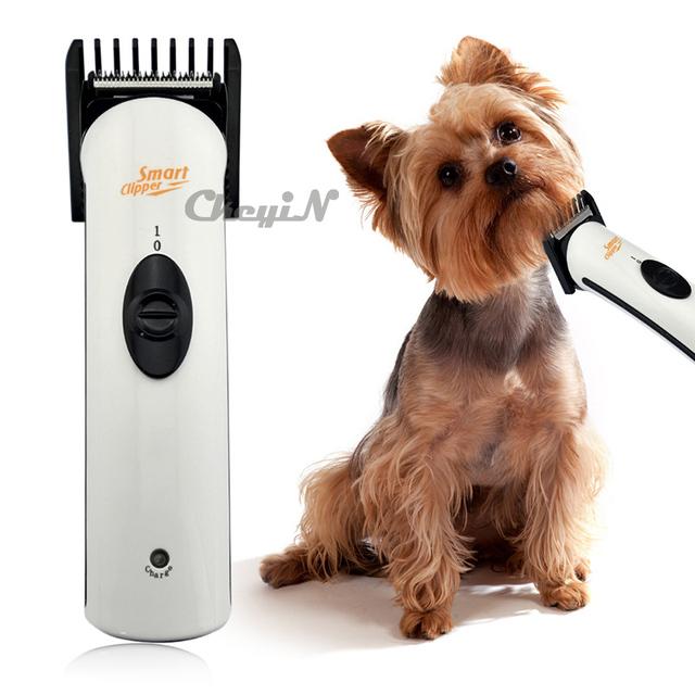 cat grooming machine
