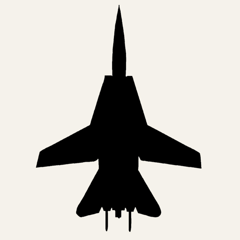 Wholesale 50pcs/lot F-14 Fighter Car Sticker Pilot Fly Aircraft Jet Bomber Combat fighter Vinyl Decal For Truck Window Bumper(China (Mainland))