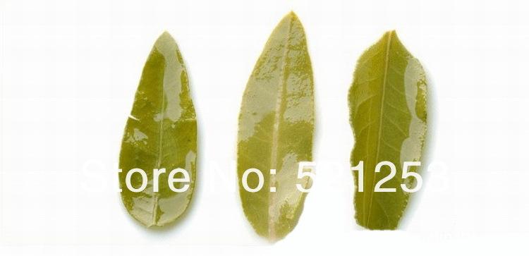 110G Natural Organic Wild Apocynum Tea Health Care Tea lower blood pressure free shipping<br><br>Aliexpress