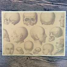 """PSJ-089 High quality 100% """"Display Model skull"""" kraft paper vintage poster pictures for home decor house bar cafe 42x30 cm(China (Mainland))"""