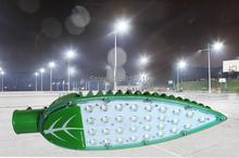 Hot  New arrival !High brightness LED Leaves Street Lights AC85V ~ 265V 30W CCC & CE free shipping(China (Mainland))