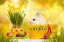 600cm*300cm easter photography backdrops Egg dishes basket photo frame Easter Sunday ZJ - katehome2016 store