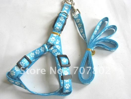 Promotions!! Hot Sale Fashion Pet Product/chain leads/traction rope/dog chain / Pet Collars Leashes(China (Mainland))