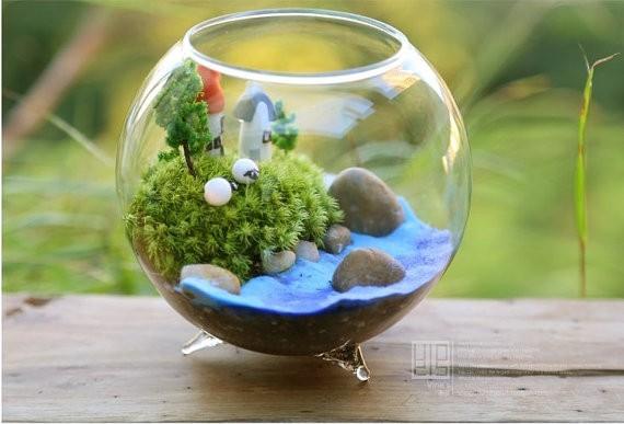 Hot sale dia 8 cm glass vase round glass vase fish bowl for Vase aquarium rond