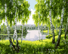 Green woods canvas paintings with frame home decoration oil painting by numbers scenery pictures wall art(China (Mainland))