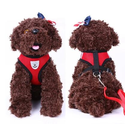 Wholesale Export Small Dog Reflective Collar Lead for Teddy Bichon Frise Pomeranian Blue Red Pink Black Mixed(China (Mainland))
