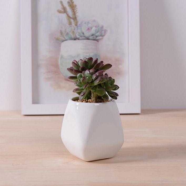 accesorios de decoracin del hogar pequeo blanco de cermica vidriada maceta con bandeja de escritorio decoracin mini suculent