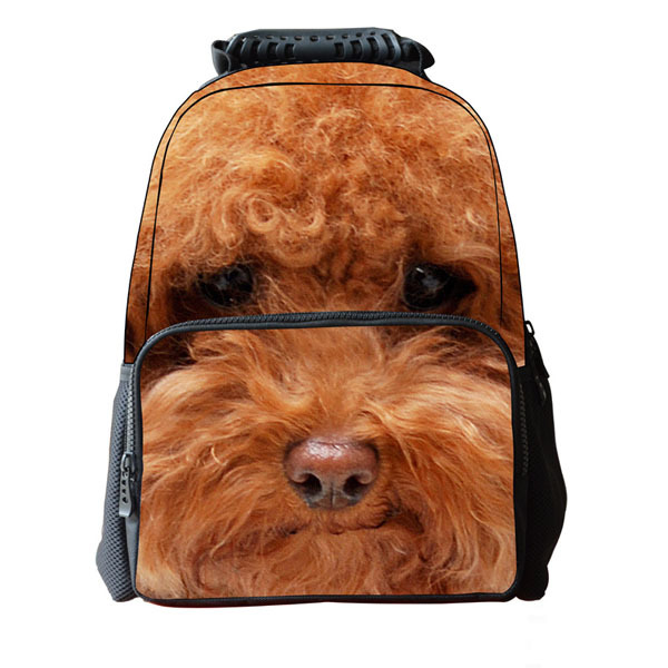 backpack bag Picture - More Detailed Picture about Free shipping ...