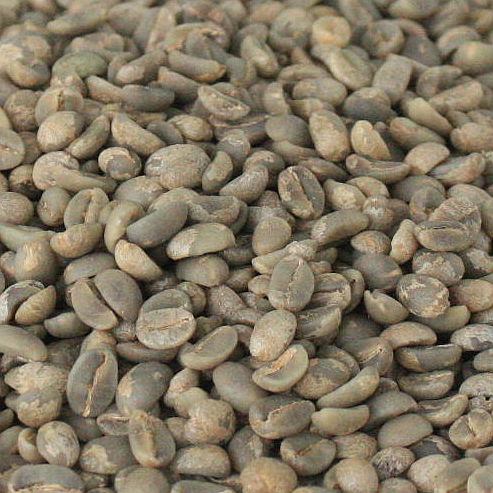 Rarity High Altitude 100 Typica Green Coffee Beans 1000g Old Varieties Yun Nan Arabica Coffee Small