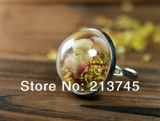 Free shipping!!! CharmHalf 20mm glass globe & silver Ring base set DIY glass bubble Glass Cover Vial Pendant(China (Mainland))
