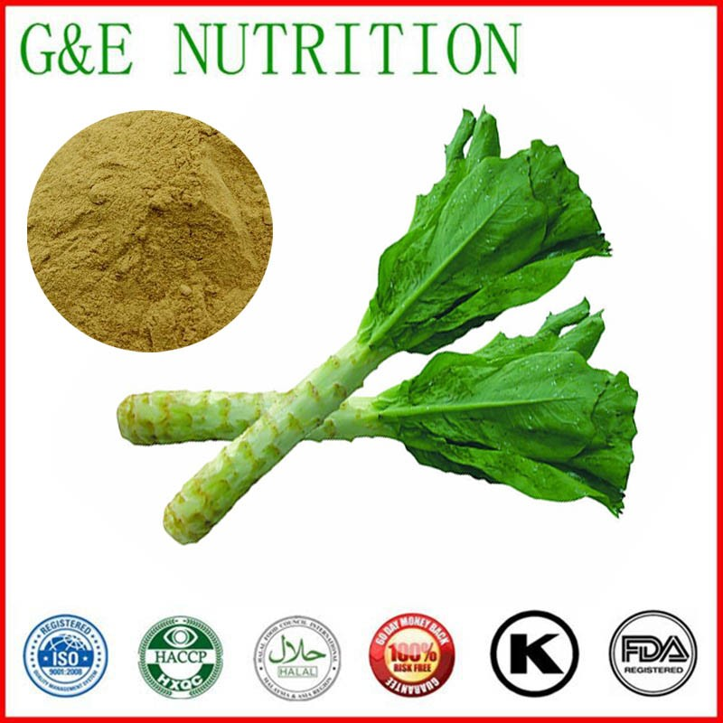 100% Natural Low Price Wild Lettuce Leaf Extract/Wild Lettuce Extract Powder/Wild Lettuce Extract 500g