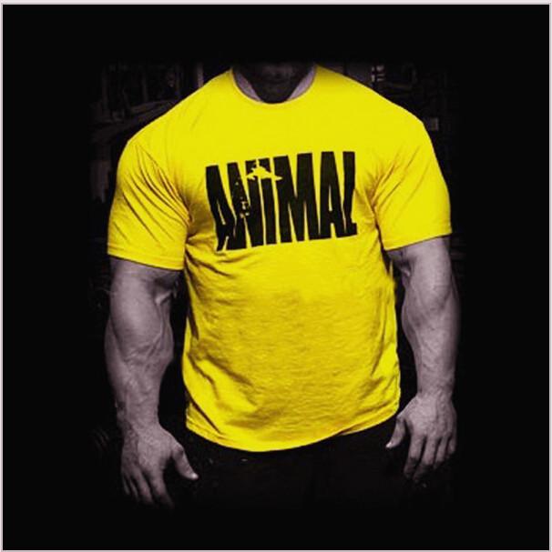 Гаджет  Newest 2015 Fitness Gymshark Tops for Men Short Sleeve T Shirt Sport Muscle Shirt Bodybuilding tshirt Boxing Clothing Cotton None Одежда и аксессуары