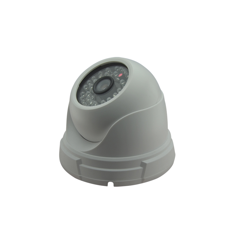 Plastic Case Dome POE IP Camera 1920*1080P Full-HD 2MP ONVIF 2.0 Waterproof Outdoor IR CUT Night Vision P2P Plug and Play