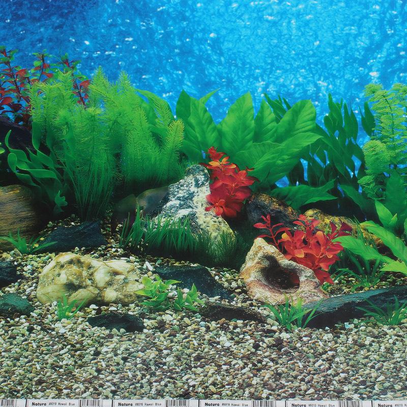 Buy aquarium backgrounds online aquarium background buy for Order aquarium fish online