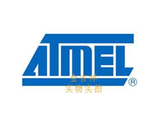 AT76C113P-J high- digital camera processors(China (Mainland))