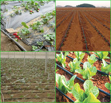 agriculture labyrinth drip irrigation(China (Mainland))