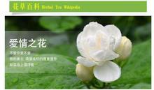 2014 new tea grade jasmine tea jasmine petals dry bulk