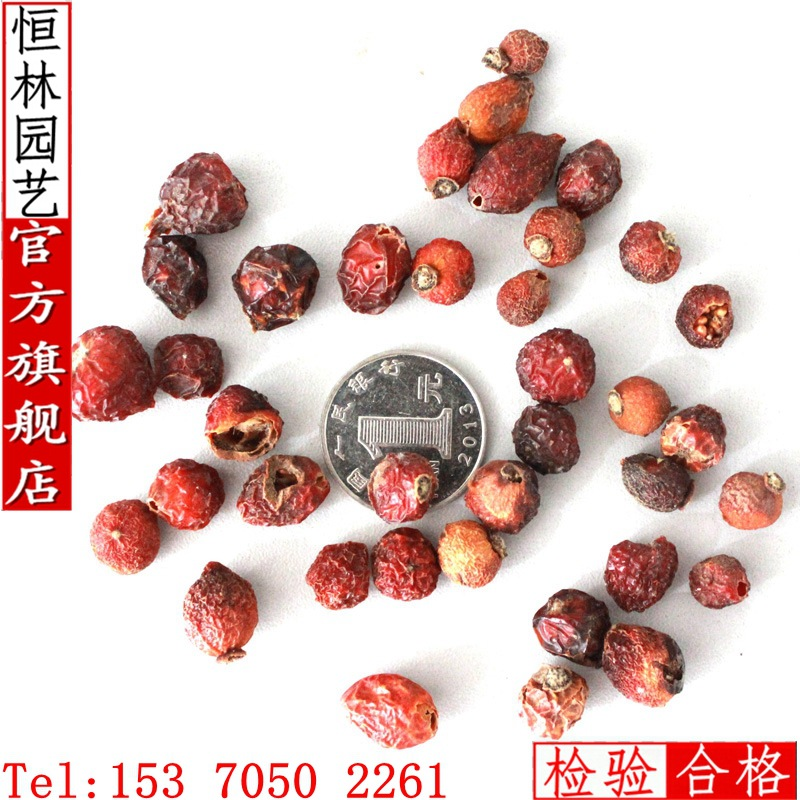 200g / Pack Rose seed ( seed mixing roses hardy plants flower seeds flower seeds(China (Mainland))