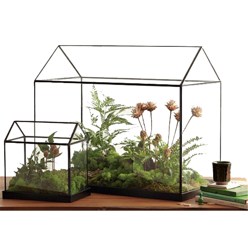 terrariums pour plantes achetez des lots petit prix. Black Bedroom Furniture Sets. Home Design Ideas
