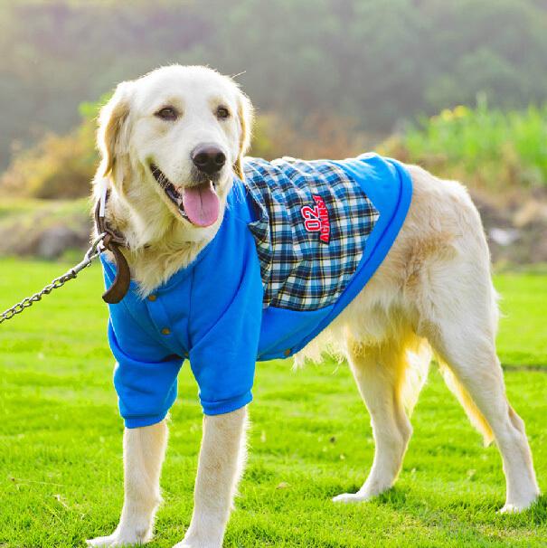 Q Dog Brand Big Dog Clothing - Bin...