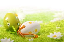 photography background 200CM*150CM New arrival Eggs in the grass photo studio Easter day zzj24