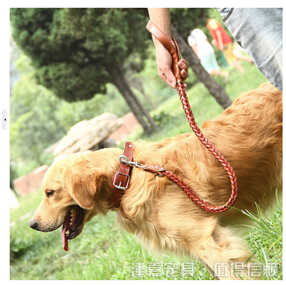 2015 Hot 8 shares a large dog leash leather pet leash pet supplies(China (Mainland))