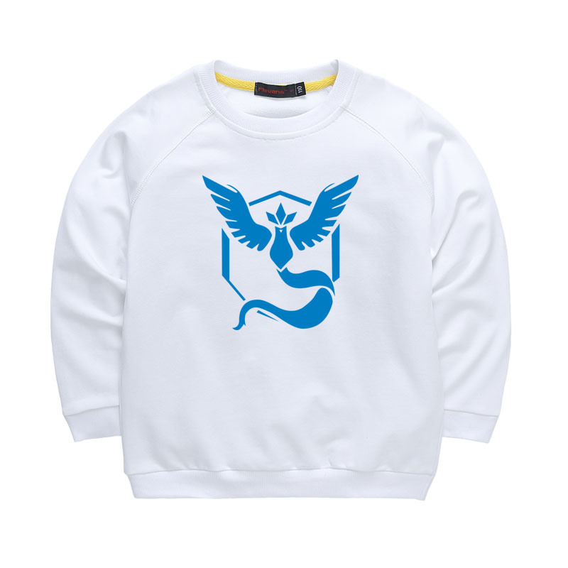 Anime Cartoon font b Pokemon b font Go Team Hoodies The Three Holy Bird Articuno Printed