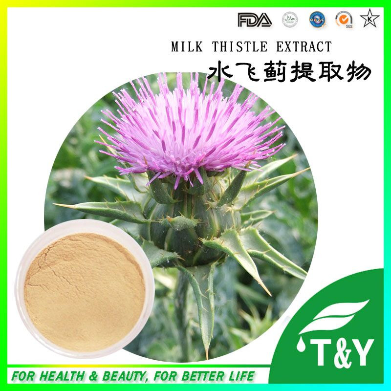 Powdered Milk Thistle for keeping health 200g(China (Mainland))