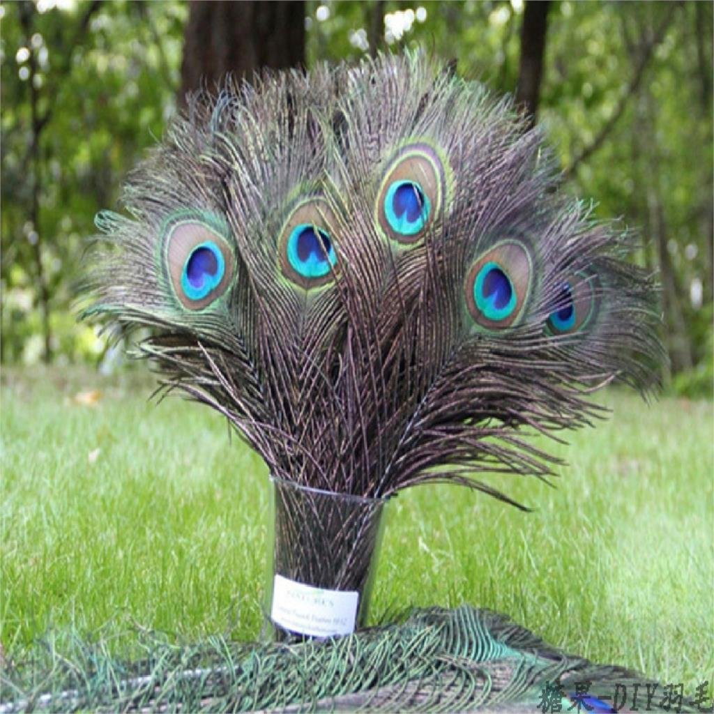2016 10PCS Natural Peacock Feather 25-30cm Clothing Decoration Plumage Fashion Crafts Beautiful Decorative(China (Mainland))