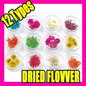 Best Selling Free Shipping 12 TYPES DRIED FLOWER Nail Art Acrylic UV Gel Tips Design C009