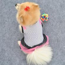 dress puppy promotion