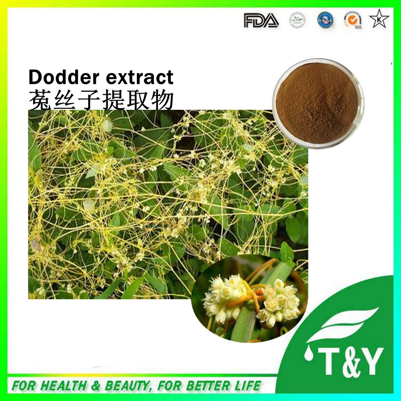 Dodder Seed Extract/ Dodder Extract, Cuscuta chinensis Lam/ glucoside 400g/lot<br><br>Aliexpress