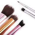 Professional 5 Pac 3 Color Aluminum Tube Makeup Brush Set Blush Brush Eye Shadow Brush Beauty