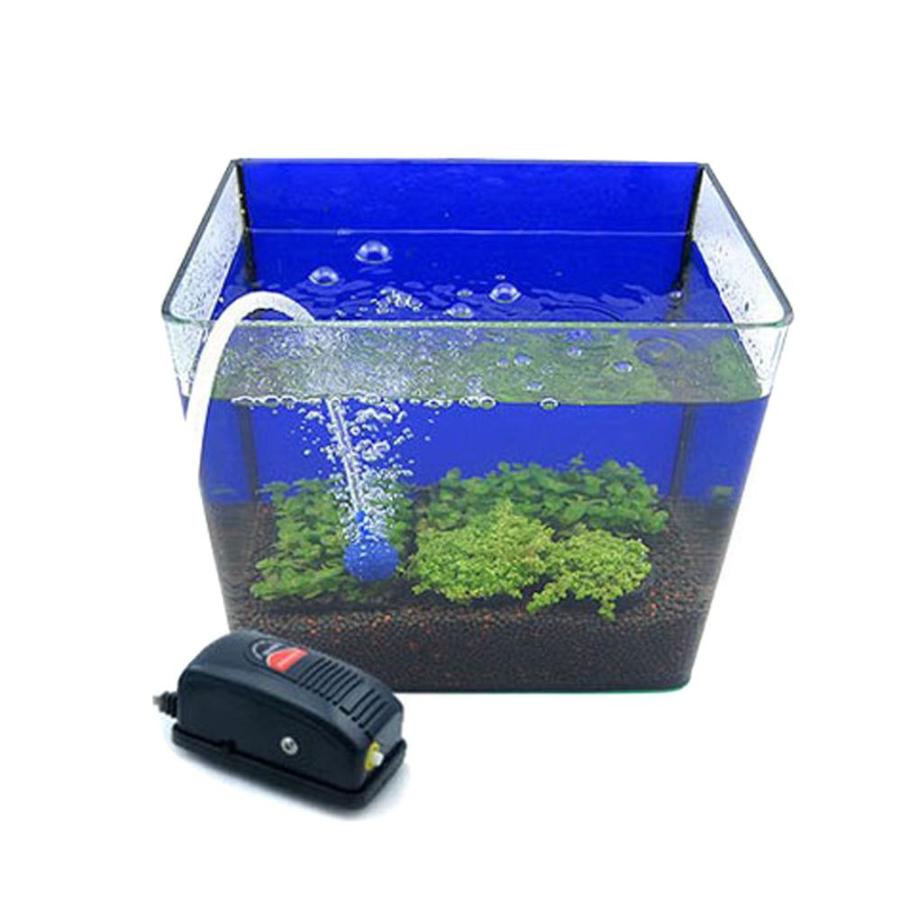 Как сделать для рыбы кислород 488
