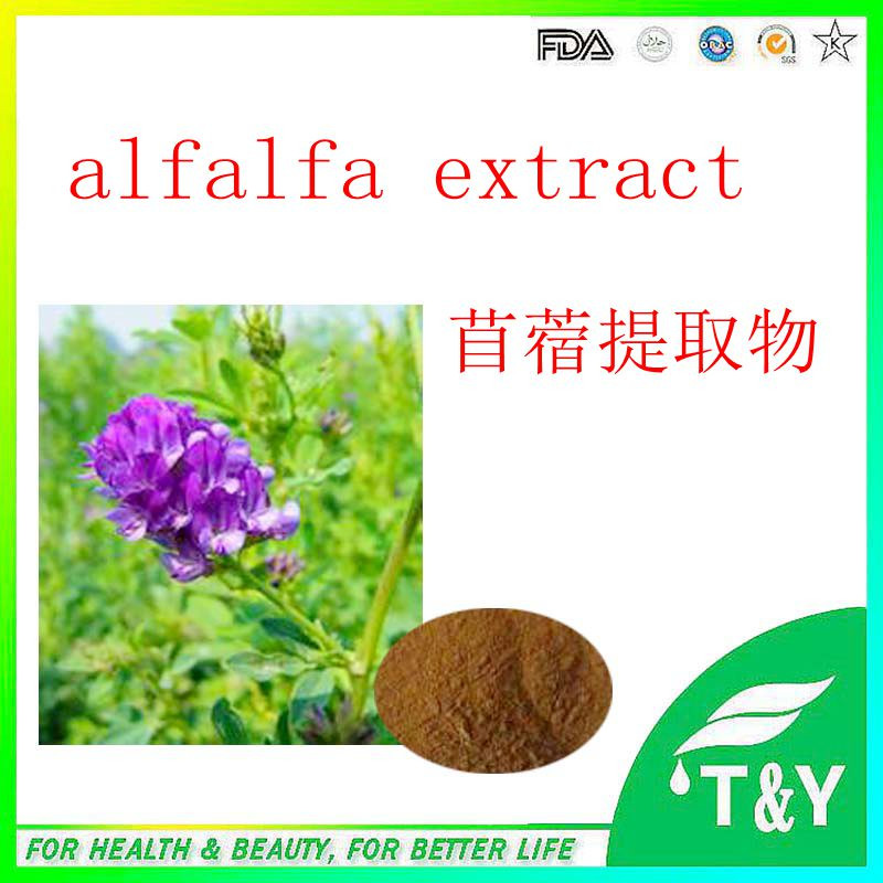 Chinese extract Alfalfa Extract   800g/lot