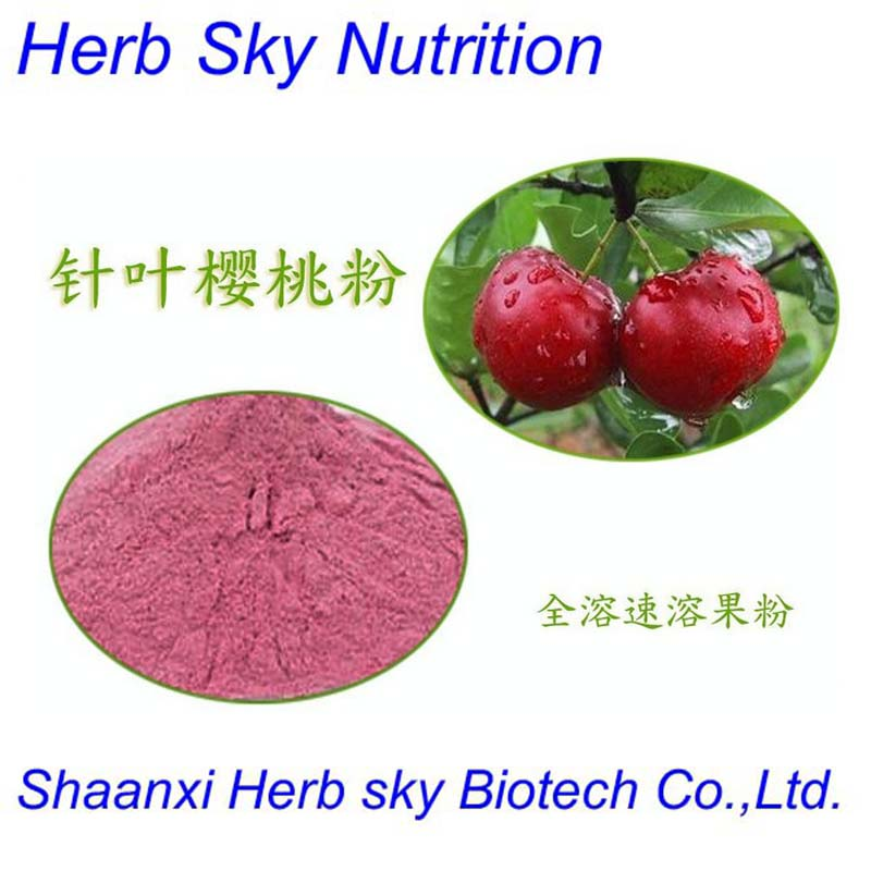 ISO,Kosher Certificate Acerola Cherry Extract  300g/lot<br><br>Aliexpress
