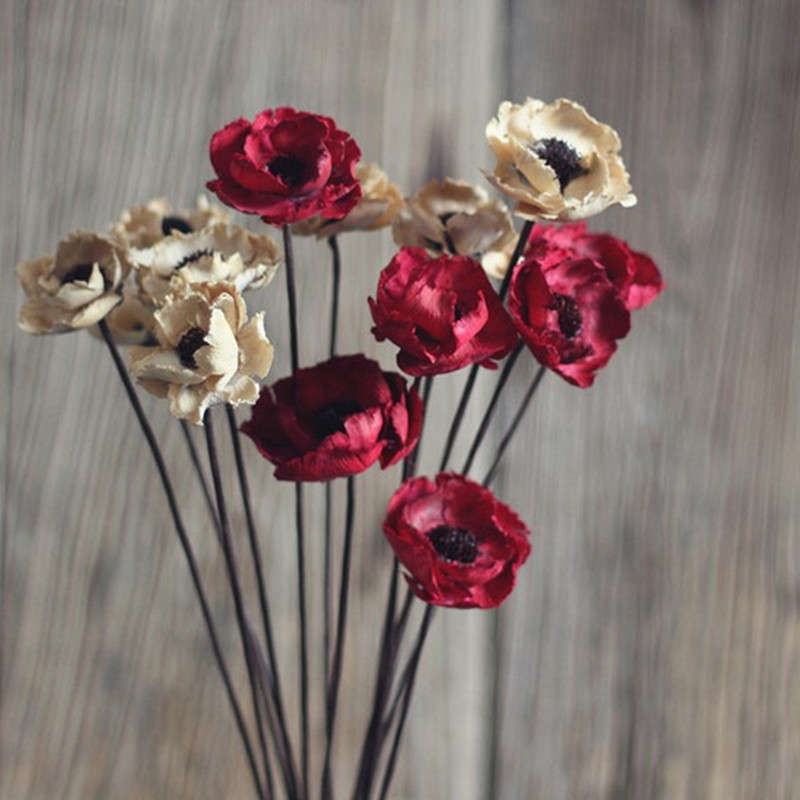 Dry poppy flower for sale gallery flower decoration ideas mightylinksfo