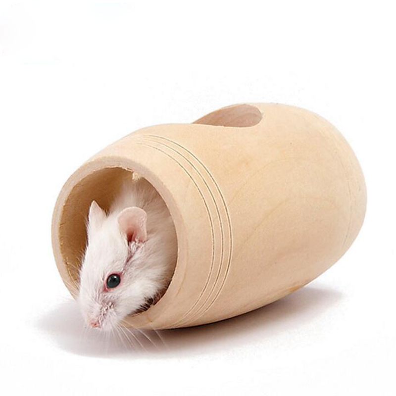 Online get cheap hamster supplies for Discount guinea pig supplies