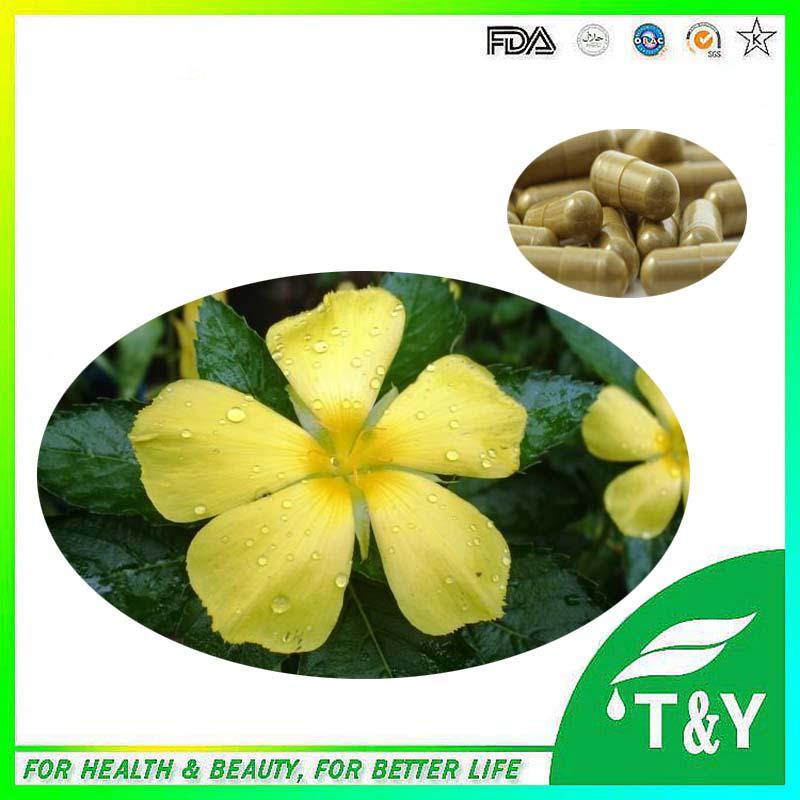 500mg*900pcs Damiana / turnera / Santa Damiana Extract capsules with free shipping(China (Mainland))