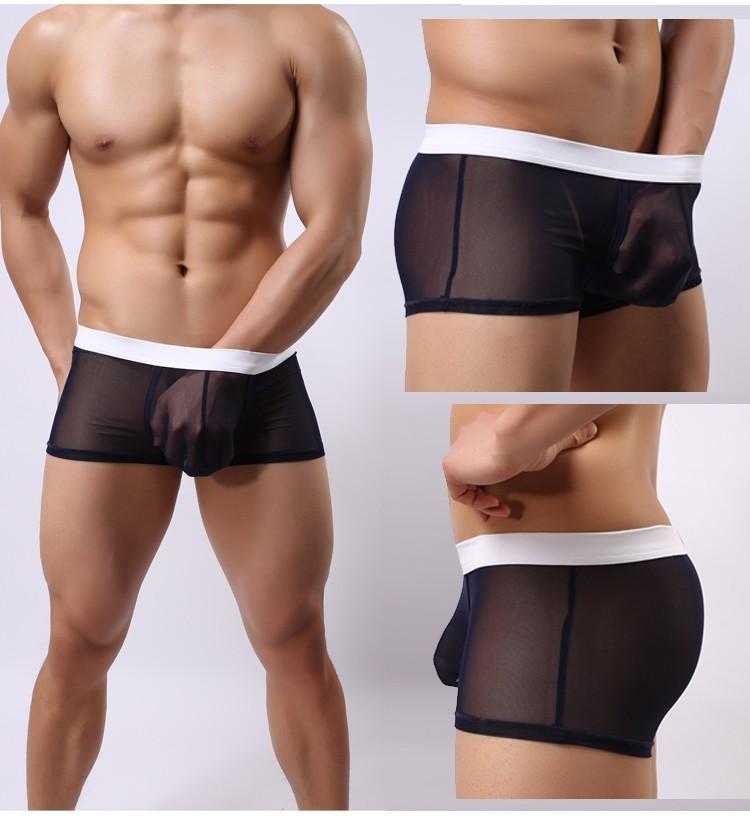 2015 men's sexy boxers men mesh transparent sexy underwear ...