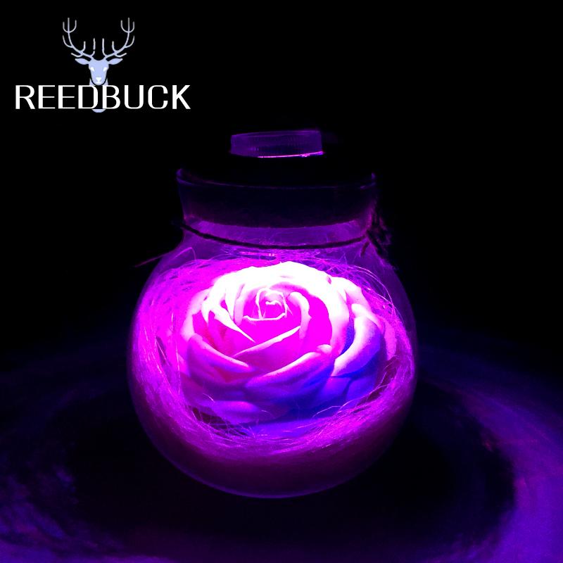 Led RGB Night Lamp 5050 SMD Beautiful 16 Colors Rose Flower Lights Wish Bottle Romantic Night Light Creative Gift Decor Led Lamp(China (Mainland))