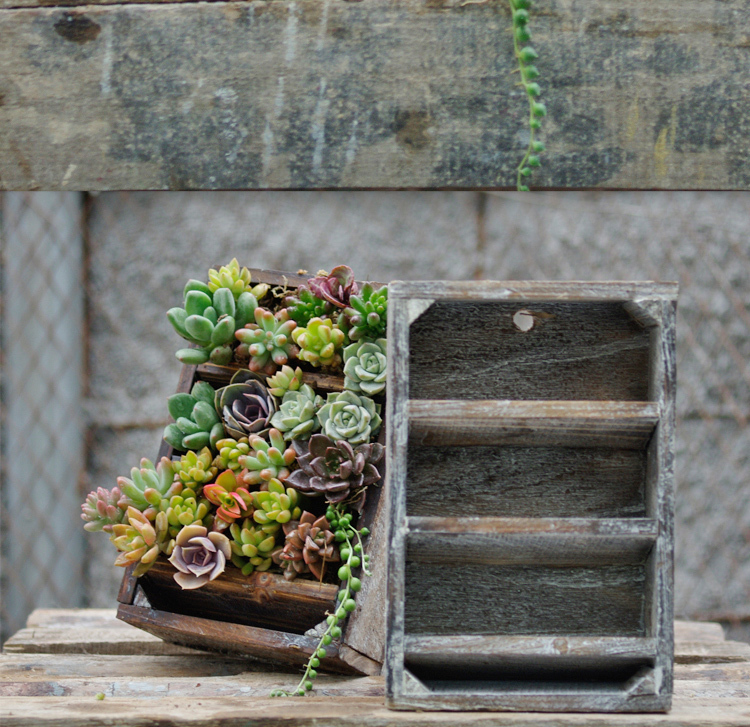Fleshy flower pot old three-layer real wood three-dimensional planting can upside