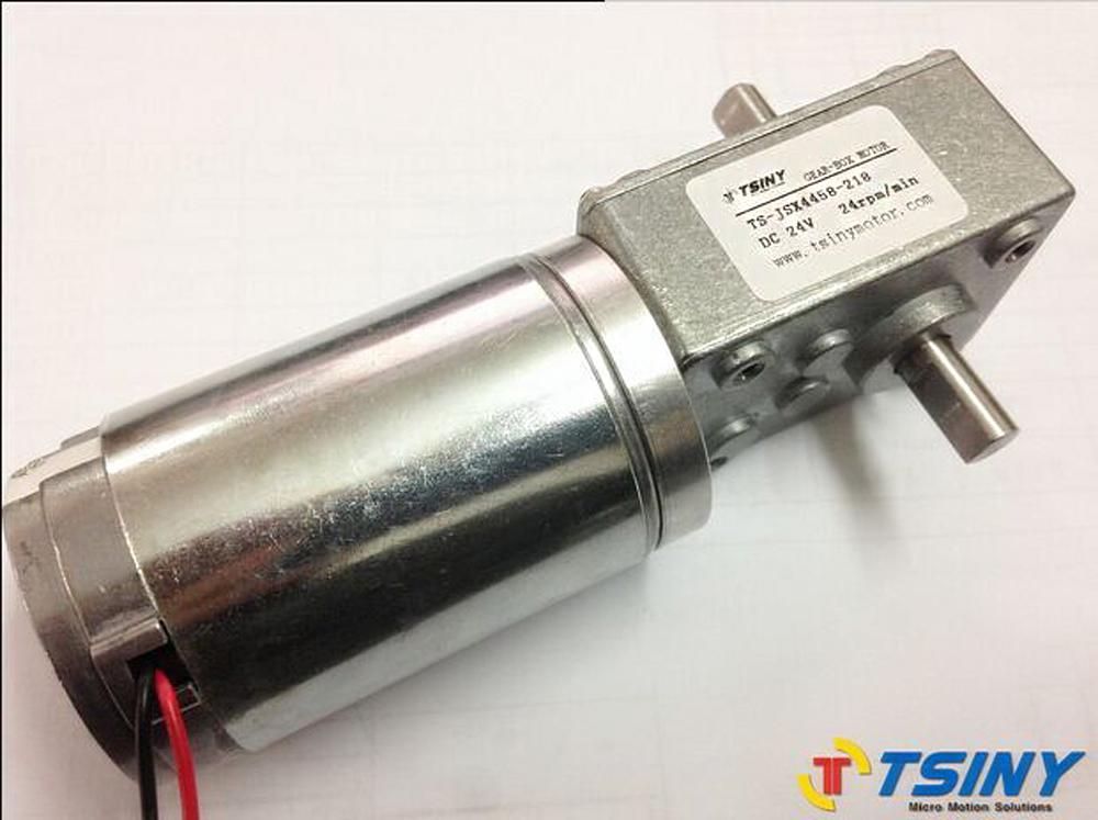 24vdc High Torque Worm Gear Motor 24rpm Double Shaft Dc