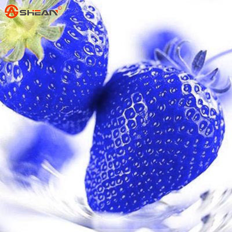 Blue Strawberry Rare Fruit Vegetable Seed Bonsai Plant Home Garden 50 Particles / lot(China (Mainland))